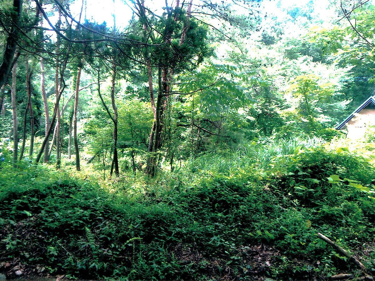北那須の別荘地の概要画像